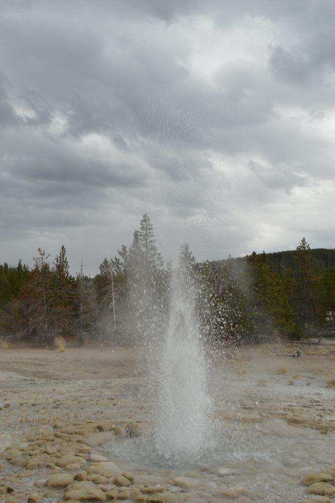 Geyser en Yellowstone. Calafiana