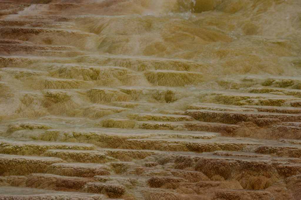 Mammoth Hot Spring. Yellowstone. Calafiana