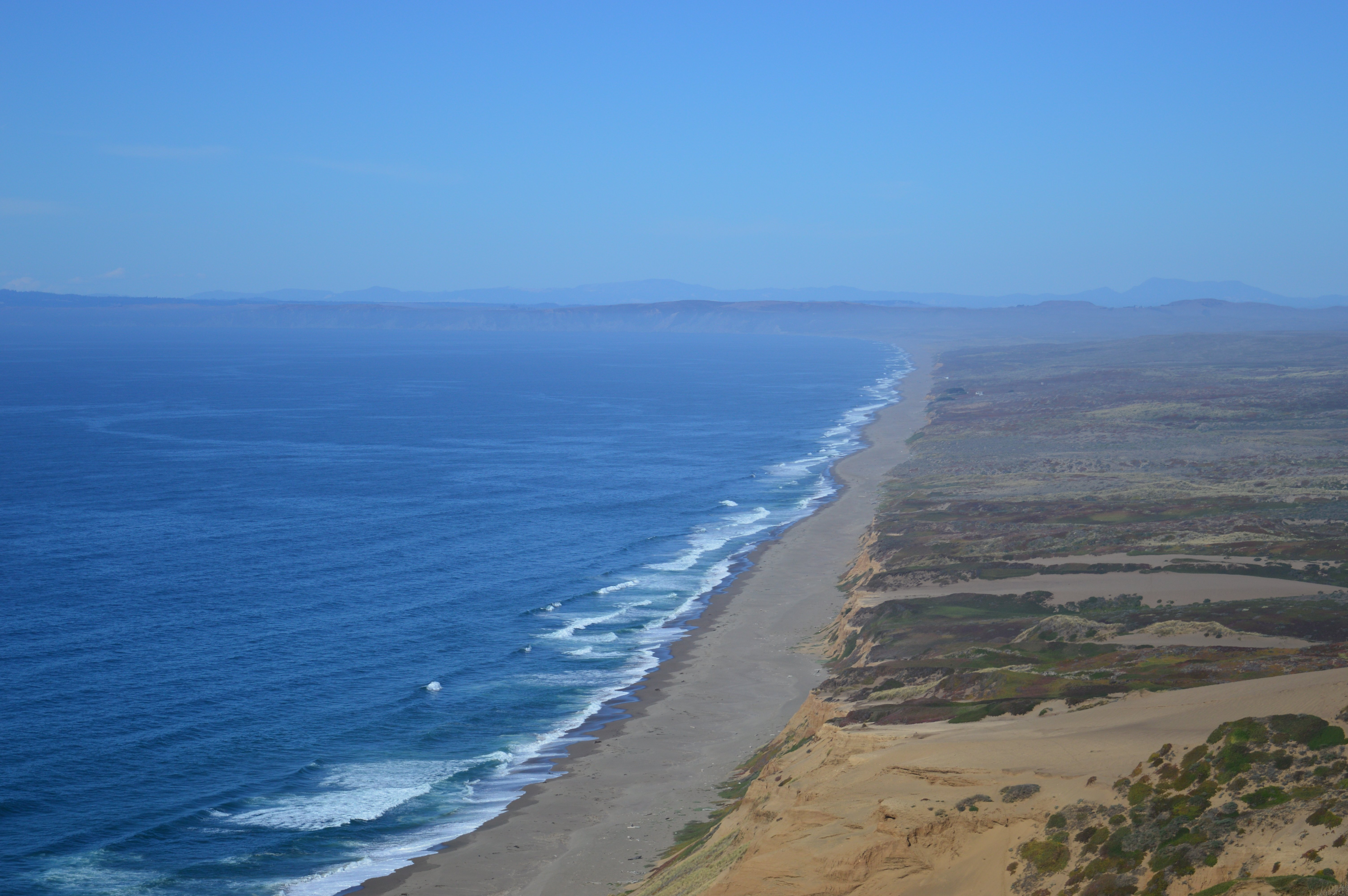Point Reyes. Calafiana